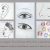 Artes plásticas y Atrezo III-IV 3 proporciones rasgos fisonómicos del rostro y expresiones faciales copia